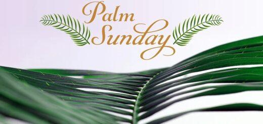 Domenica delle Palme